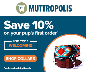 Save 20% Storewide for Our Memorial Day Weekend Sale at Muttropolis with coupon code.