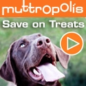 Save 20% on top selling dog chews at Muttropolis. Use code CHEWMORE at checkout. Expires 6/30/16