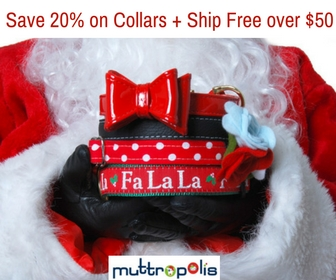 Save 20% on all Collars, Leashes & Harnesses + Ship Free over $50 Use code WALK20