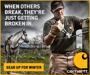 carhartt clothes
